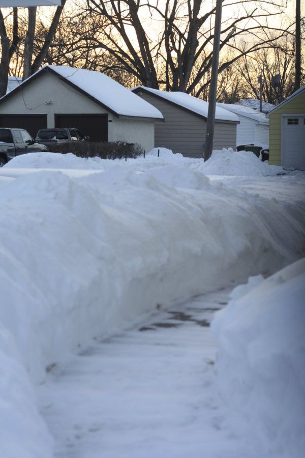 snow piles 2 - shorts and longs - julie rybarczyk5