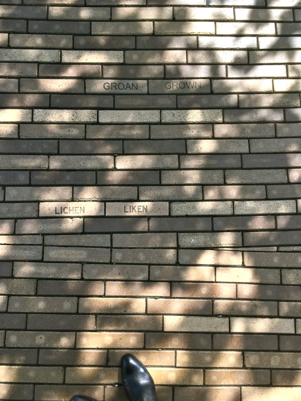 baltimore-bricks-shorts-and-longs-julie-rybarczyk13